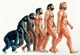 Marketing y evolución